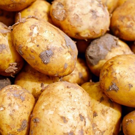 34 Common Potato Growing Problems and Solutions