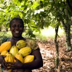 Cooperatives can bolster inclusive growth in Africa